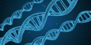 Genetics as Health Determinant